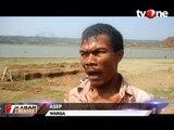 Debit Air Waduk Setupatok Surut, Puluhan Ton Ikan Mati