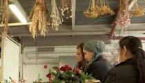 Des fleurs pour se reconstruire : reportage au jardin de réinsertion Fleurs de Cocagne
