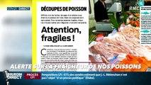 Dupin Quotidien : Alerte sur la fraîcheur de nos poissons - 19/09