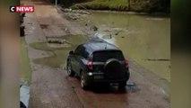 Australie: Une voiture bloquée par des crocodiles au milieu de la route