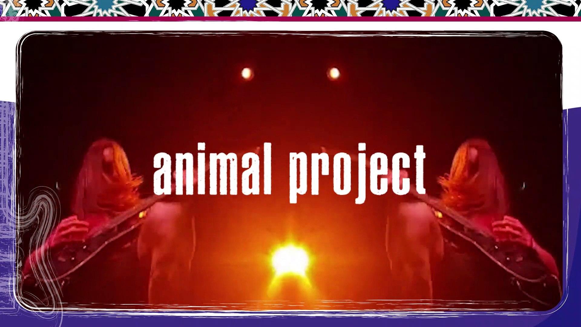 Animal Project | Al-AlmA Music Festival | 29 Nov 19