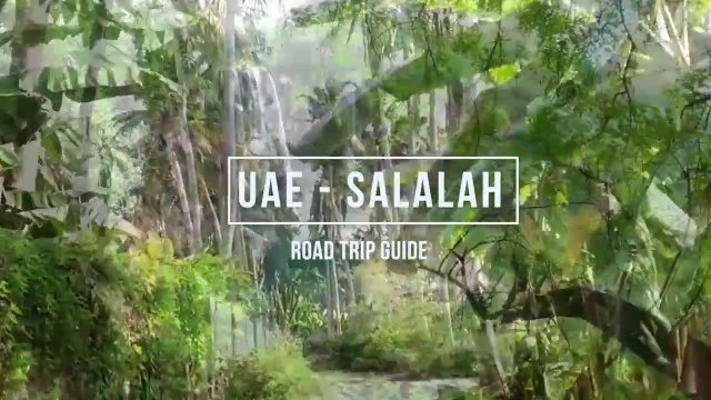 UAE to Salalah Raod Trip Guide I Dubai to Salalah by Road I Eid Trip Advisor