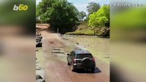 Group of Crocs Block Infamous Road in Australia Forcing Car To Stop