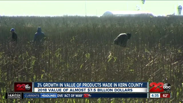 Ag Report: Good signs for farmers in Kern County, smaller navel orange harvest, and National Farm Safety and Health Week