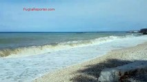 Il mare di fine estate in Puglia: a Bisceglie il fascino delle onde solitarie