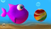 Learn colors with the Rainbow Fish as he meets a jellyfish, shark and slides down a magic slide