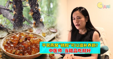 """【专题特写】平民燕窝""""桃胶""""可以滋补养颜?中医师:当甜品吃就好"""