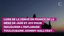 Nouvel album posthume de Johnny Hallyday : Laeticia, David et Laura ont-ils donné leur accord ?
