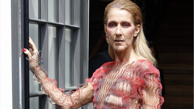 Celine Dion To Drake: Don't Tattoo Her Face On His Body
