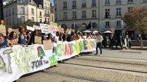 Troisième grève mondiale pour le climat à Nantes