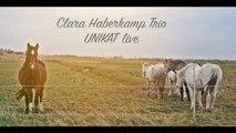 Clara Haberkamp Trio - Unikat (LIVE)