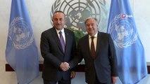 - Dışişleri Bakanı Çavuşoğlu, BM Genel Sekreteri Guterres ile görüştü