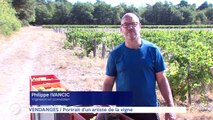 Le journal - 20/09/2019 - VENDANGES Portrait d'un artiste de la vigne
