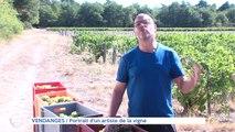 VENDANGES Portrait d'un artiste de la vigne