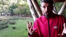 La saison du brame du cerf débute au parc animalier de Sainte-Croix