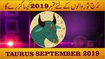 Taurus September 2019 Monthly Horoscope Predictions ..urdu hindi by m s bakar