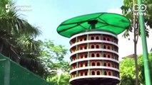 Innovative Bird House Built By Ghaziabad Development Authority