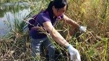 En Asie, des volontaires participent au World CleanUp Day