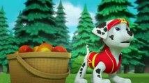 PAW Patrol Season 4 Episode 40 - Pups Save Sensei Yumi