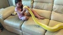 Cette fillette joue avec un serpent géant de 6m de long !