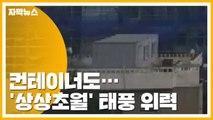 [자막뉴스] 컨테이너가 맥없이...'상상초월' 태풍 위력 / YTN
