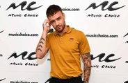 Liam Payne jokes Louis Tomlinson was a 'diva'