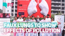 These Faux Lungs Will Show You Effects of Pollution on Your Lungs