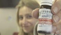 Du cannabis à l'hospice