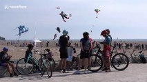 Hundreds of kites flown in Toronto at last week of summer party