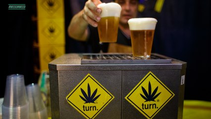This Week in Weed: Pot in IPA, Green Saturday and Canna Tampons.