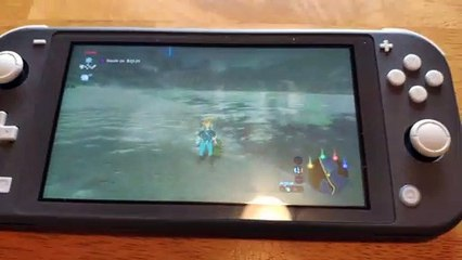 Nintendo Switch Lite -Joy-Con Drift