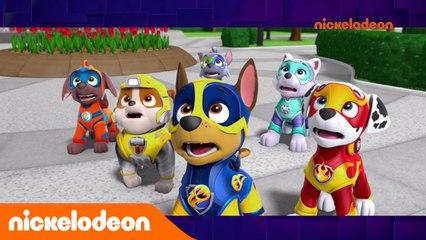 L'actualité Fresh | Semaine du 16 au 22 septembre 2019 | Nickelodeon France