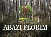 Abazi Florim à Fontenay Trésigny  livraison de Bois de chauffage