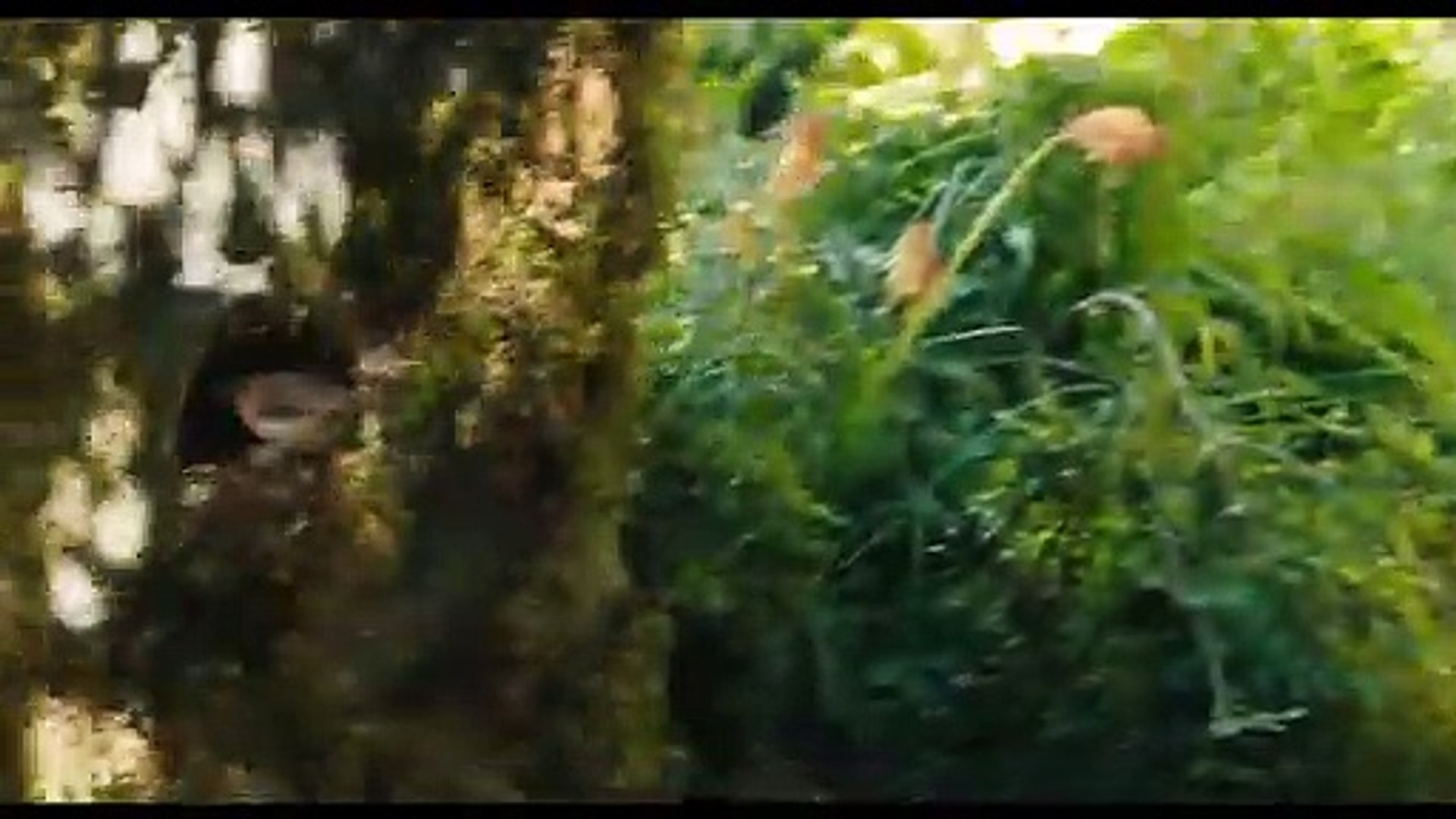 The Secret Garden International Trailer #1 (2020) | Movieclips Trailers
