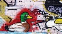 Banksy's Graffti Tour!