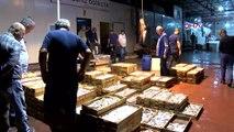 Antalya akdeniz balıklarını yemenin tam zamanı