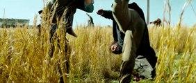 ZOMBIELAND- DOUBLE TAP elokuva