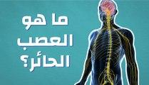 ما هو العصب الحائر؟