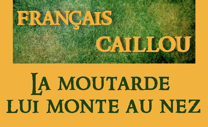 Français caillou / Définition du jour : La moutarde lui  monte au nez