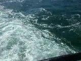 マゼラン海峡をフェリーで