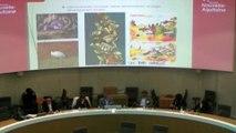 """Intervention projet Chaire ENEDS Didier Mulnet """"Eduquer au développement durable, objectifs, enjeux et méthodes. Quels enjeux éducatifs ici et là-bas, aujourd'hui et demain ?"""""""