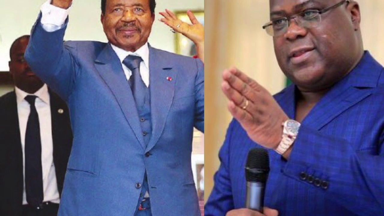 General Assembly of the United Nations: Cameroonians ask Congolese to do; exchange of President Felix Tshisekedi against President Paul Biya, the entire Government and the Cameroonian National Assembly