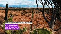 Lugares de contos de fadas: Conheça o incrível deserto de Tatacoa