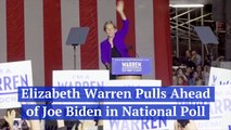 Elizabeth Warren Gains Popularity Over Joe Biden
