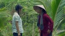 Tiếng sét trong mưa tập 34 - trực tiếp trọn bộ - tap 35 - Phim Việt Nam THVL1 - Phim tieng set trong mua tap 34