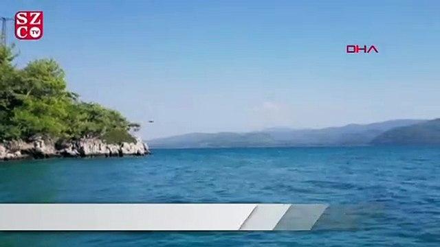Dünyaca ünlü plajda ilginç olay! Gören şaştı kaldı