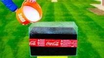 Experiment - Coca Cola vs Soda !