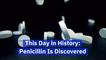 Penicillin Changed The World