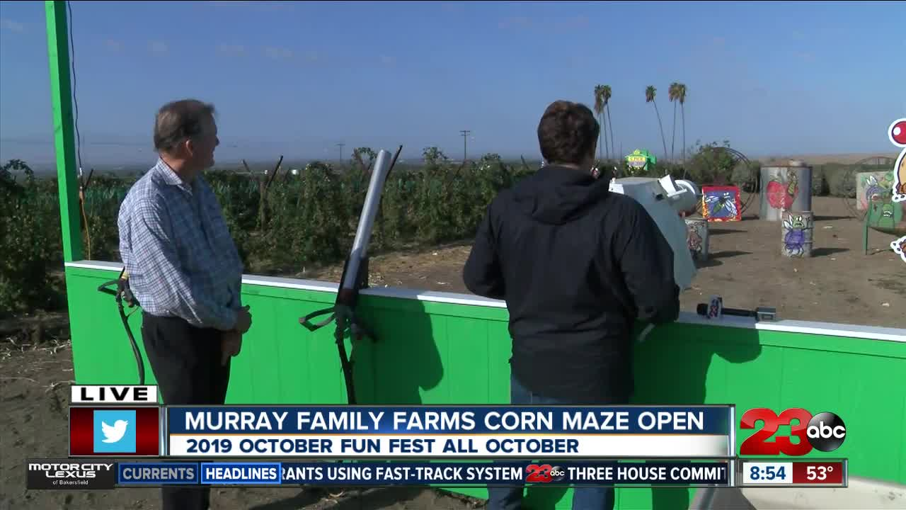 Murray Family Farms ha fun fall cannons at their October Fun Fest