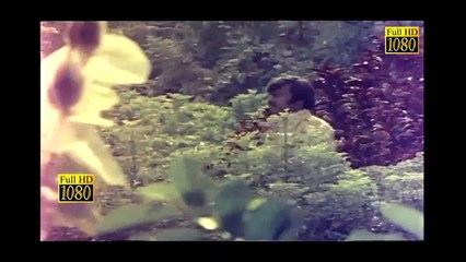 Tamil Superhit Movie|Auto Raja|Vijayakanth|Gayathri